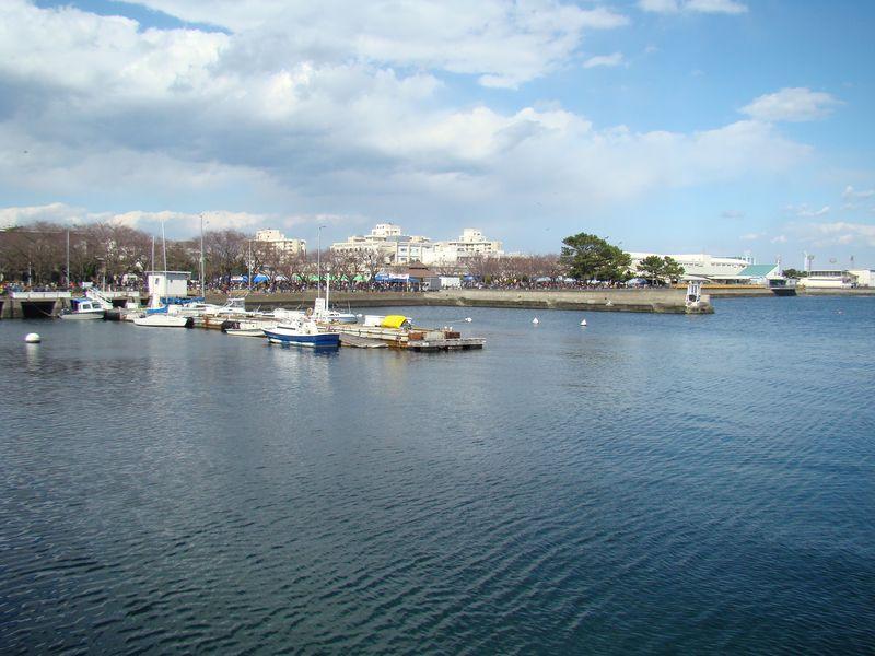 Yokosuka 6
